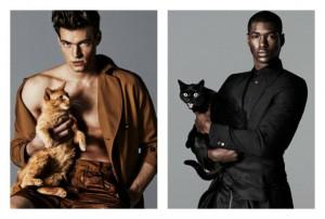 male-models-cats