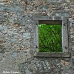 finestra-verde