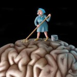 cervello sporco