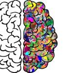 Cervello_00