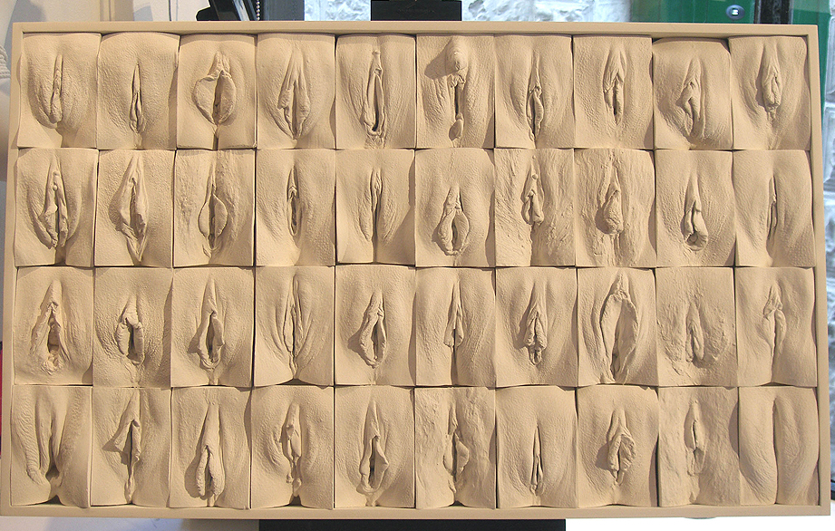 Il muro di vagine di Jaime McCartney