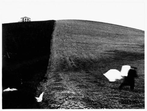 Da Presa di coscienza sulla natura (1977-2000). Campagna marchigiana