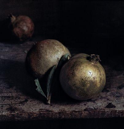 Craigie-Horsfield-Two-Pomegranates-2013-404x420
