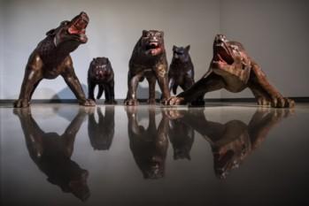 1.Wolves Coming , 2008-2010 ph. Michele Stanzione