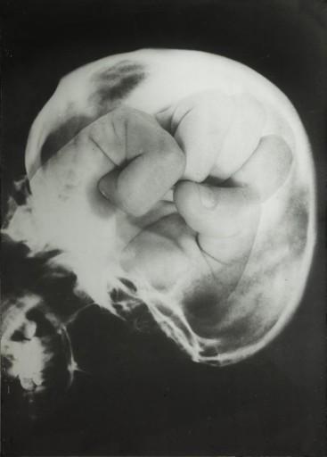 ketty_la_rocca_craniologia_1973_web