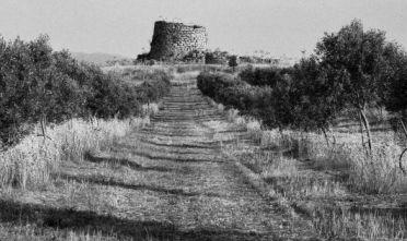 gianni-berengo-gardin-372x221