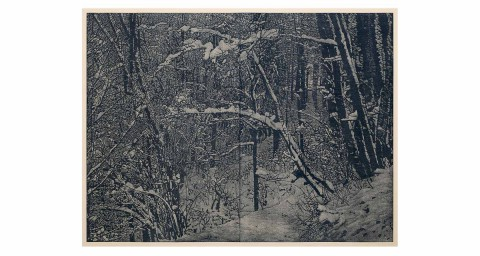 inverno-franz-gertsch