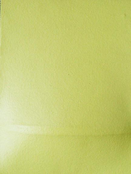 Moreno Goca,Gobbo,estroflessione su tela,cm.18x24x3,2005