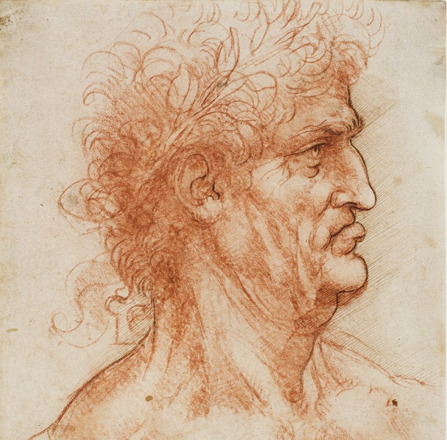 Leonardo-Testa-virile-coronata-dalloro