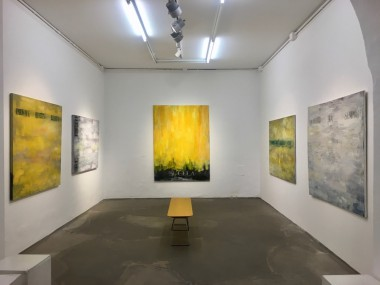 Vista parziale della mostra Francesco Correggia,Try this lens,Galleria Antonio Battaglia, 2020