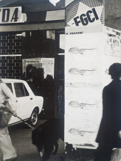 1975 affissione Balene