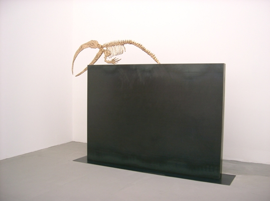 Nicola Salvatore - Quadriennale di Roma - 2005 -2