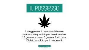 i-punti-della-legge-sulla-legalizzazione-della-cannabis-469359