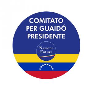 guaido presidente