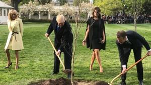 La quercia di Macron piantata alla Casa bianca
