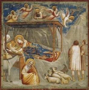 Giotto di Bondone - Natività