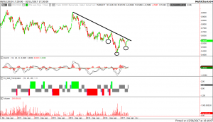 commodities trading: hogs (maiali vivi)